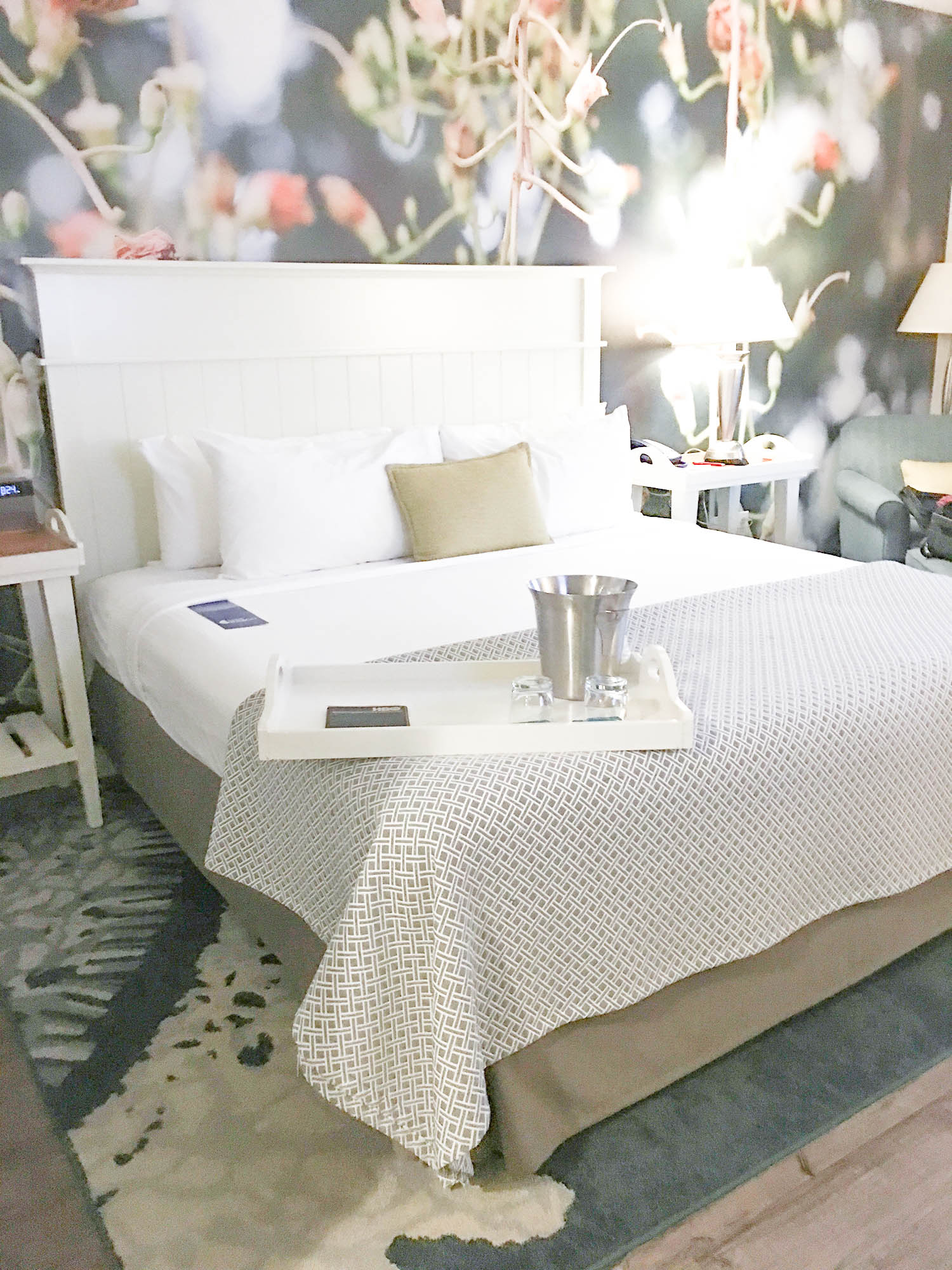 Where to Stay: Hotel Indigo Sarasota - Bianca Dottin