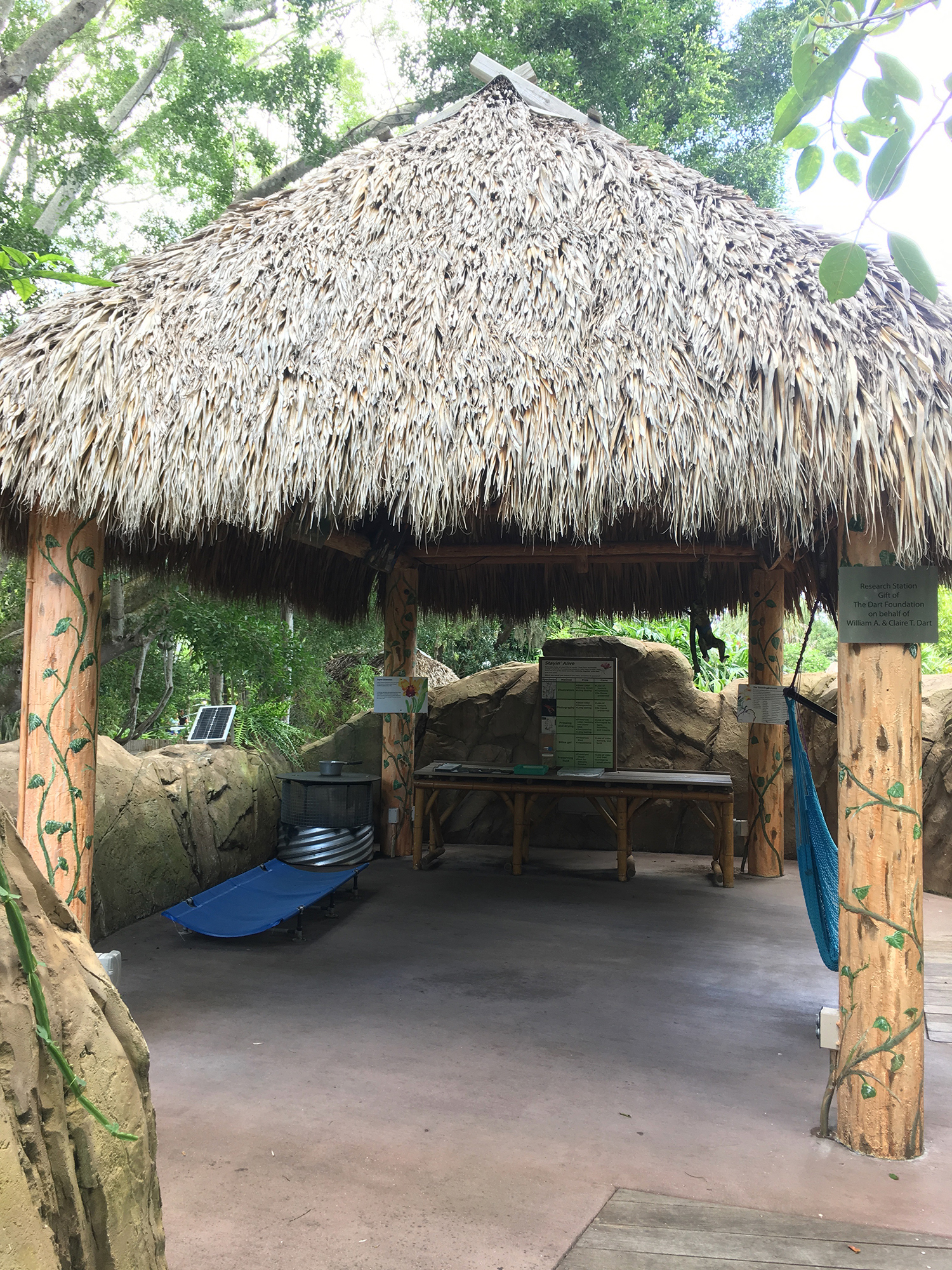 4 Reasons to Visit Marie Selby Gardens - Sarasota Attractions - Bianca Dottin