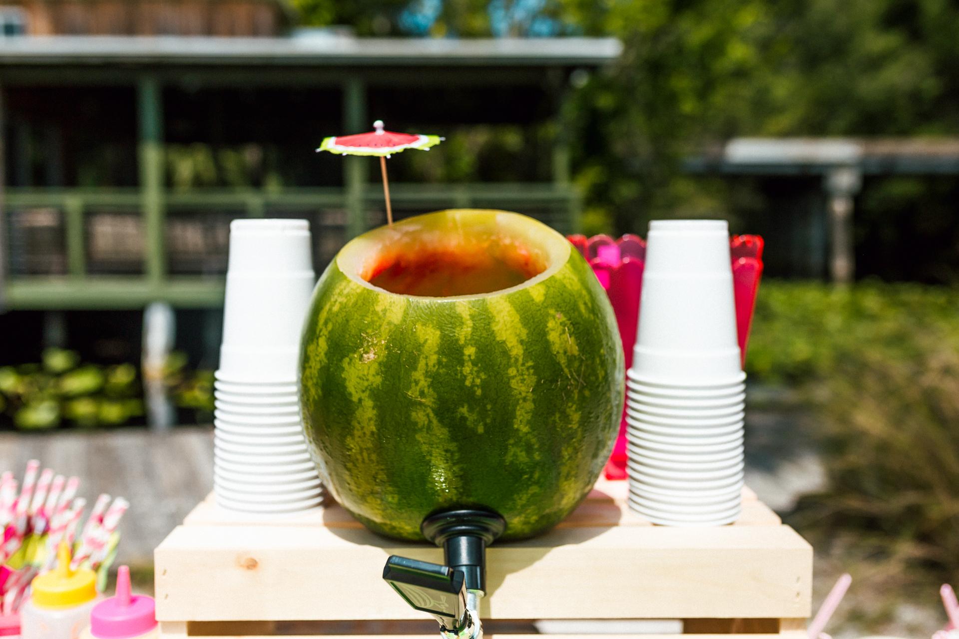 watermelon keg - bianca dottin