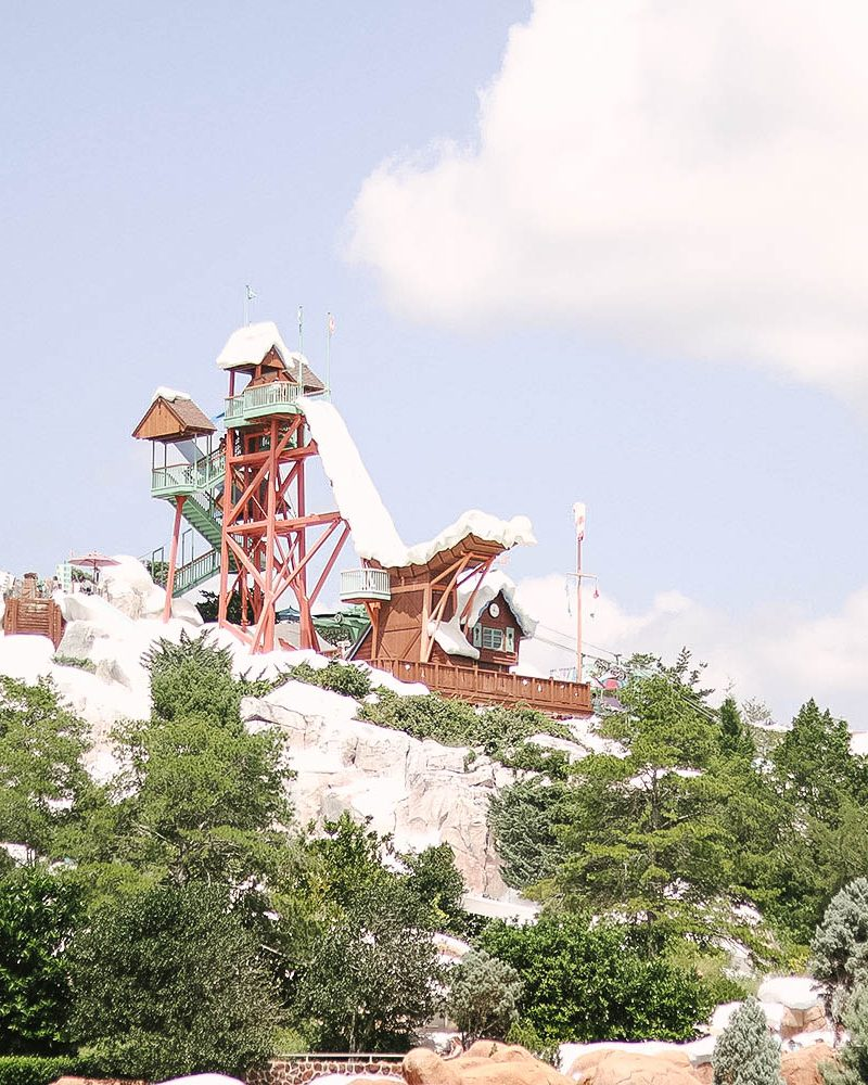 7 Things You Must Try at Blizzard Beach Orlando