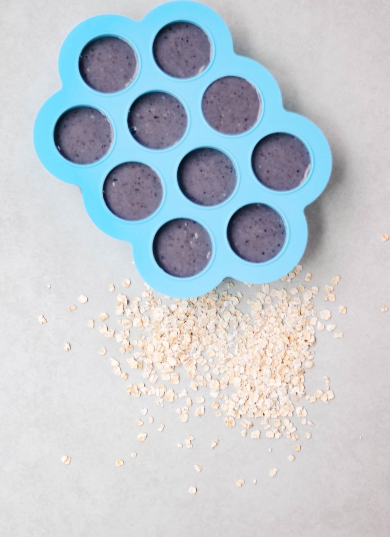 Easy Oatmeal Blueberry Puree for Baby